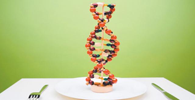 Obesidad genetica